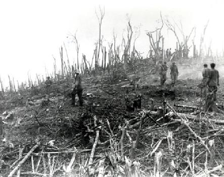 http://www.weststpaulantiques.com/images/443_hamburger-hill-destruction.jpg